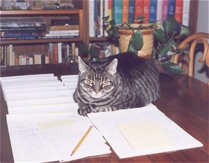 Completed manuscripts make a comfortable cat bed.